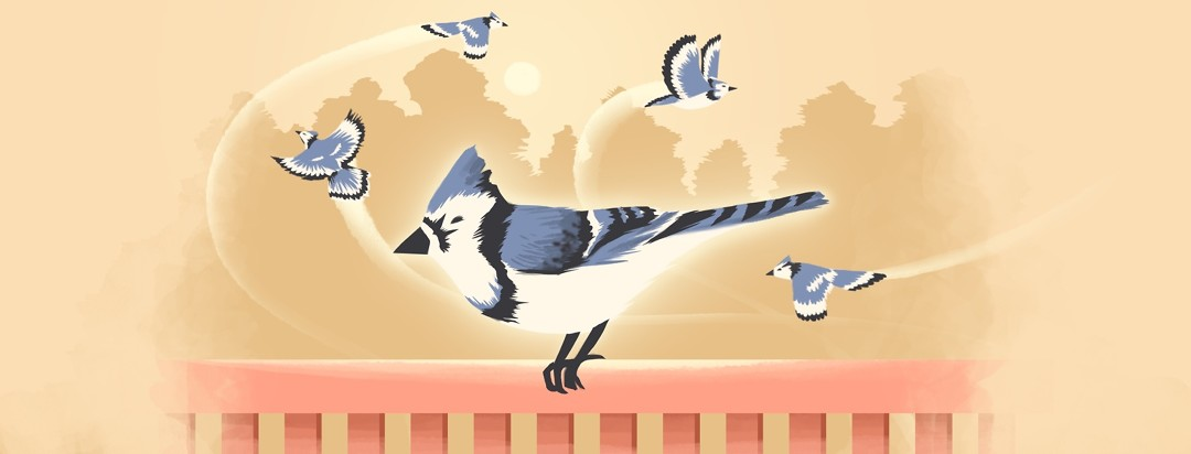 A bluejay is perched on a ledge while other jays fly around in the background of bright, soft light.