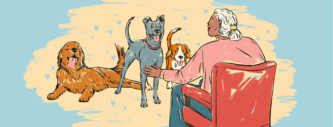 alt=an older woman smiles and reaches out to three happy dogs approaching her.